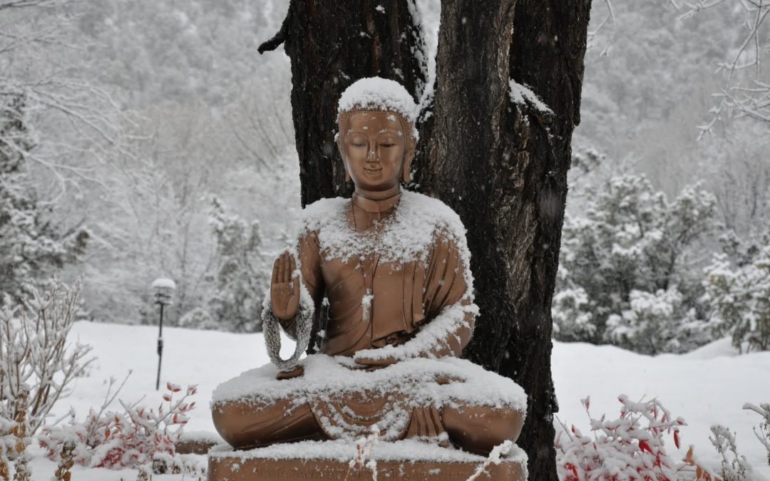 Finding your Holiday Zen